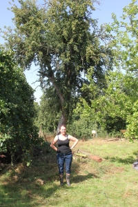 me in front of the Holmer Perry Tree at Broome Farm