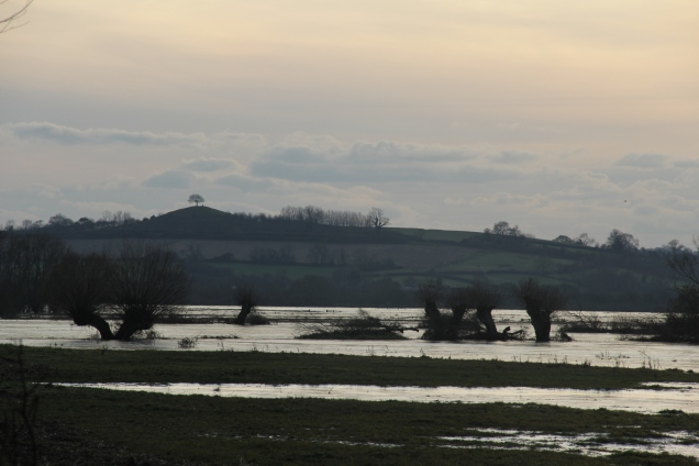 Burrow Hill in the distance