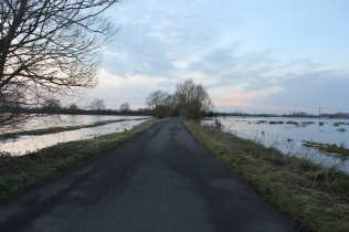 Road through the flood